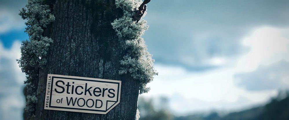Reportaje-Stickers-of-wood-1
