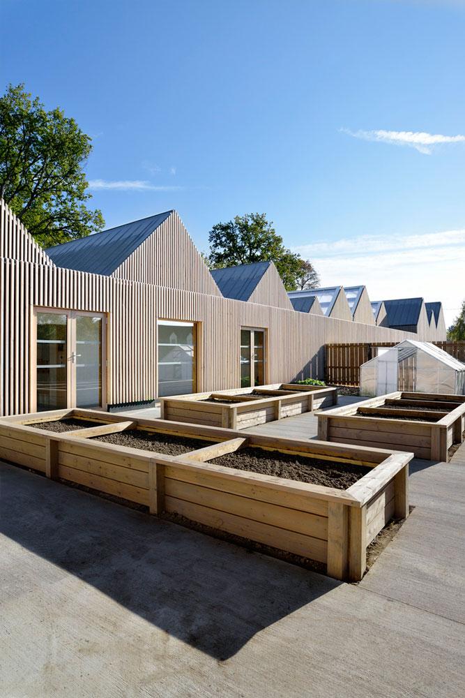 Escuela La Rouche en madera
