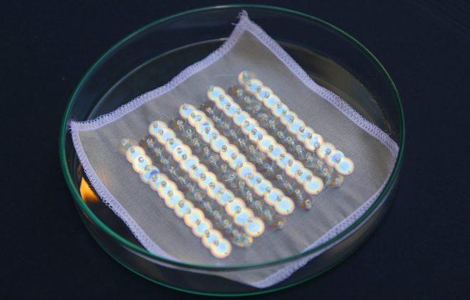 bio-iridescent (2)