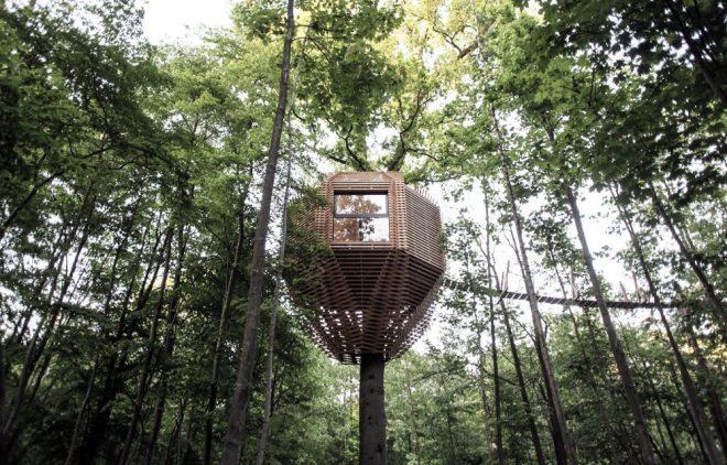 tree-house-hotel-1