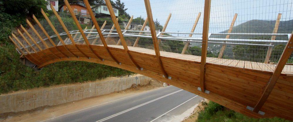 Puente zapallar - Enrique Brown2 (2)