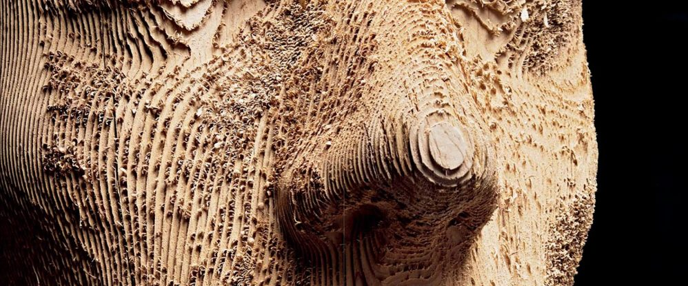 artistas tallado madera