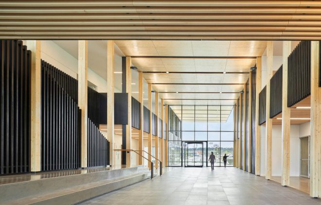 timber trends